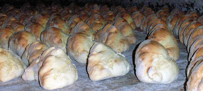 マテーラのパンができるまで(パン屋の1日)− 2
